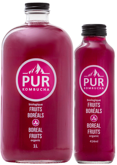 fruitsboreals-2formats-purkombucha2020